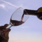 [ Rufina ] Torna a Rufina il Bacco Artigiano, quattro giorni dedicati al vino ed alle tipicità del territorio