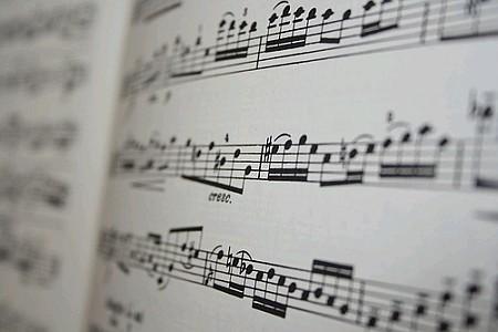Venerdì di musica all'Istituto Rinaldo Franci: in scena il Mic Ensemble diretto da Charlotte Politi