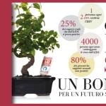 """[ Empoli ] """"Ora lo Sai un Bonsai per un futuro senza Aids"""", l'Associazione Anlaids torna per Pasqua nelle piazze Italiane con i Bonsai"""