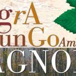[ Grosseto ] 42^ edizione della Sagra del Fungo Amiatino Bagnolo