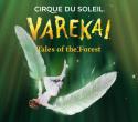 Varekai-StLouis-600