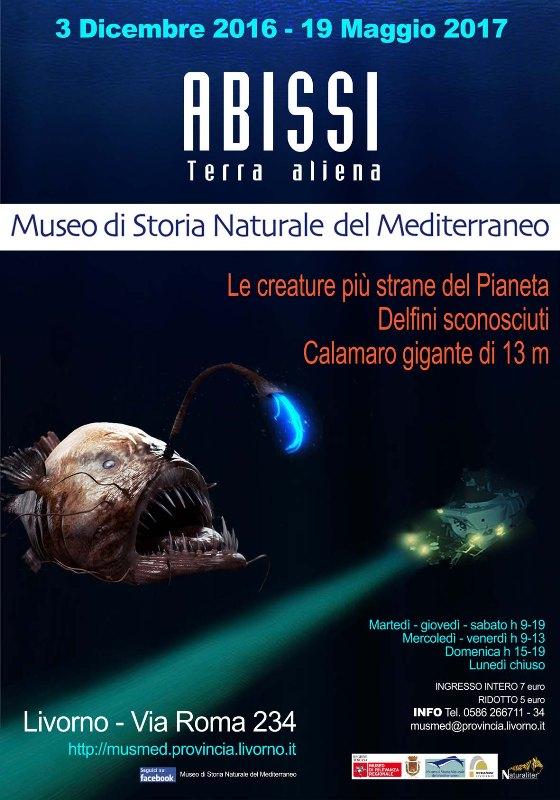 Abissi, terra aliena: mostra al Museo di Storia Naturale del Mediterraneo Livorno