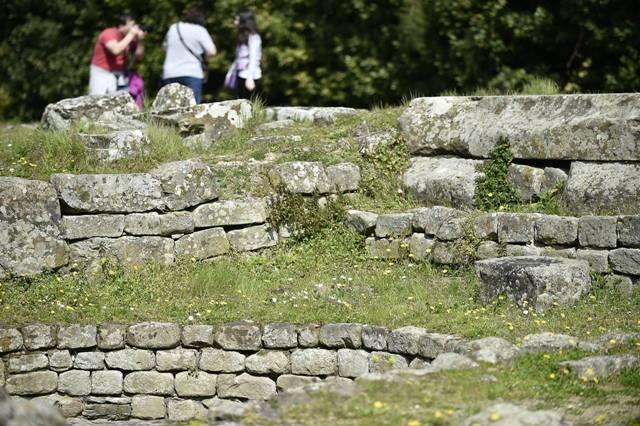 Fiesole: alla scoperta delle erbe spontanee dell'area archeologica