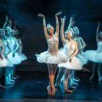 [ Firenze ] Il Lago dei Cigni Russian Stars & Moskow State Classical Bakllet al Teatro Verdi