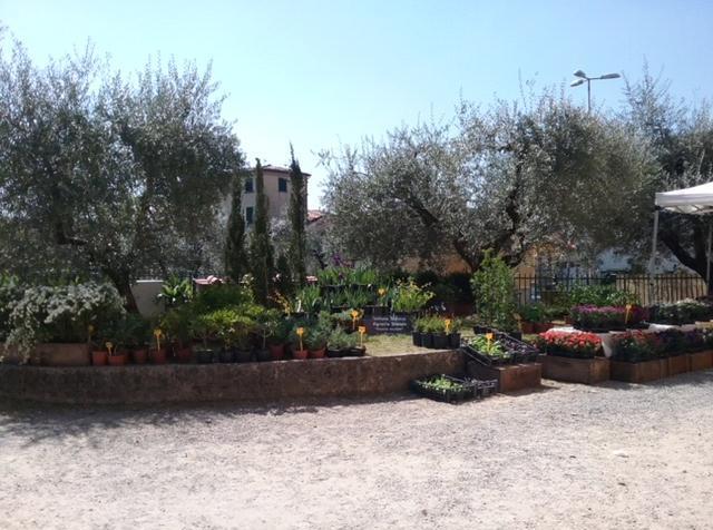 Naturalitas, mostra mercato dedicata ai prodotti della terra