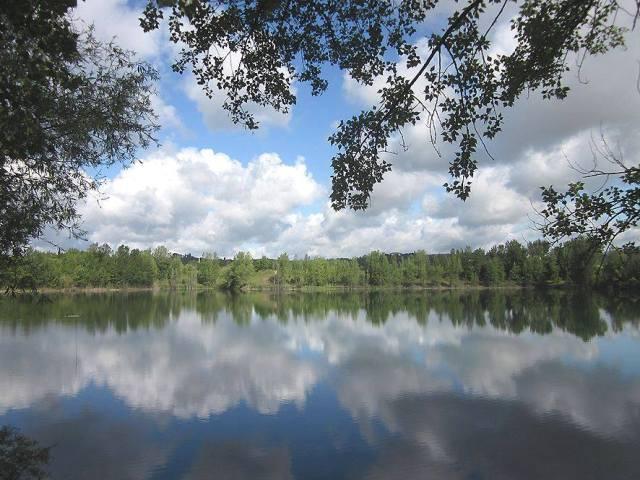 Area naturale protetta Arnovecchio fa il bis per la visita sulle fioriture