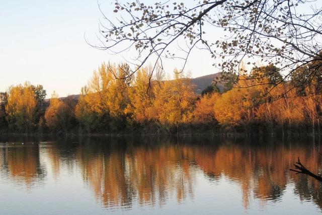Visita a tema ad all'oasi di Arnovecchio: è tempo del foliage dai colori autunnali
