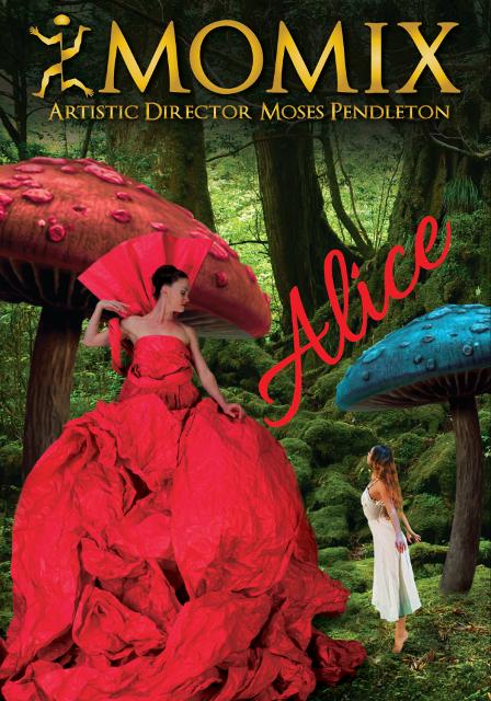 Alice il nuovo spettacolo dei Momix al Teatro Verdi
