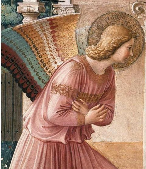 Visite guidate al Museo di San Marco