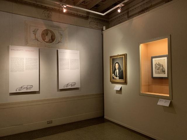 L'universo Naturale di Giovanna Garzoni resuscita Palazzo Pitti