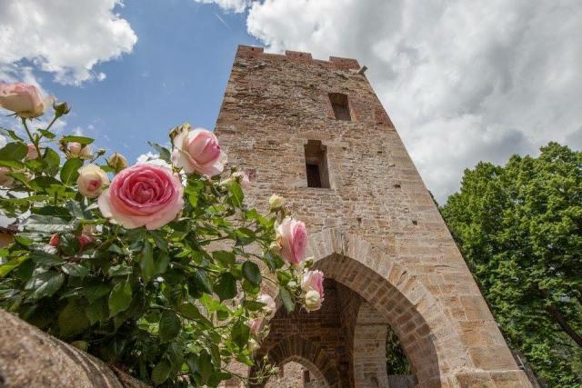 Annullamento della manifestazione Vicopisano Castello in Fiore e del Mercatino del Collezionismo
